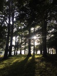 Keswick, Lake District Copyright Lara Barbier